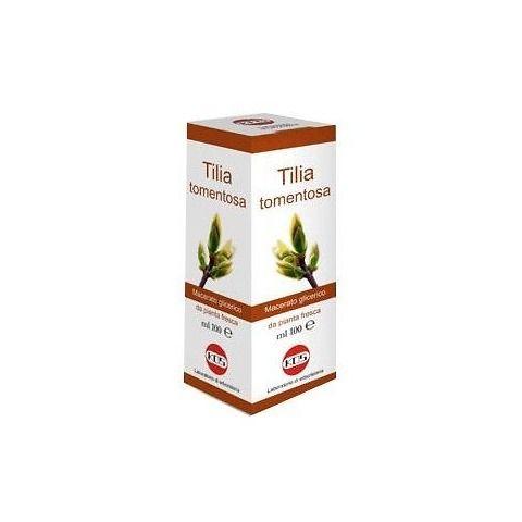 Tilia tomentosa gocce